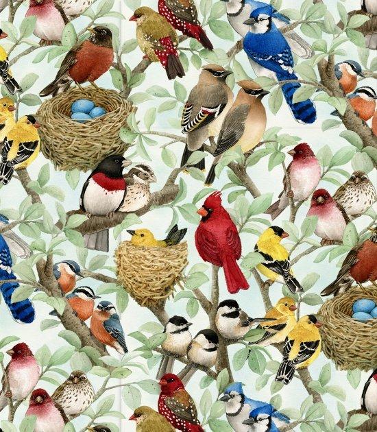 ES-Beautiful Birds:  Housing Boom 4320 Azure - Songbirds & Nests