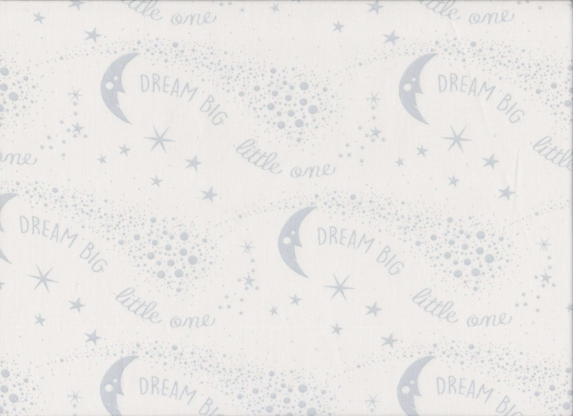 PROMO* FT-Children's Prints 49698 Gray - Dream Big Little One