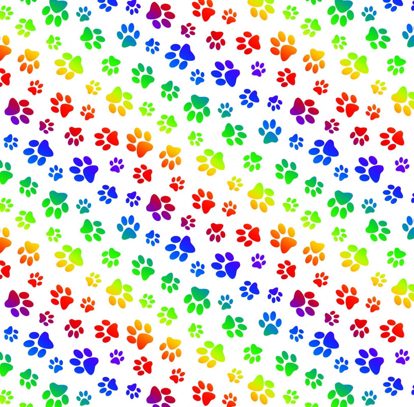 ES-Rainbow Collection 660 White - Paw Prints