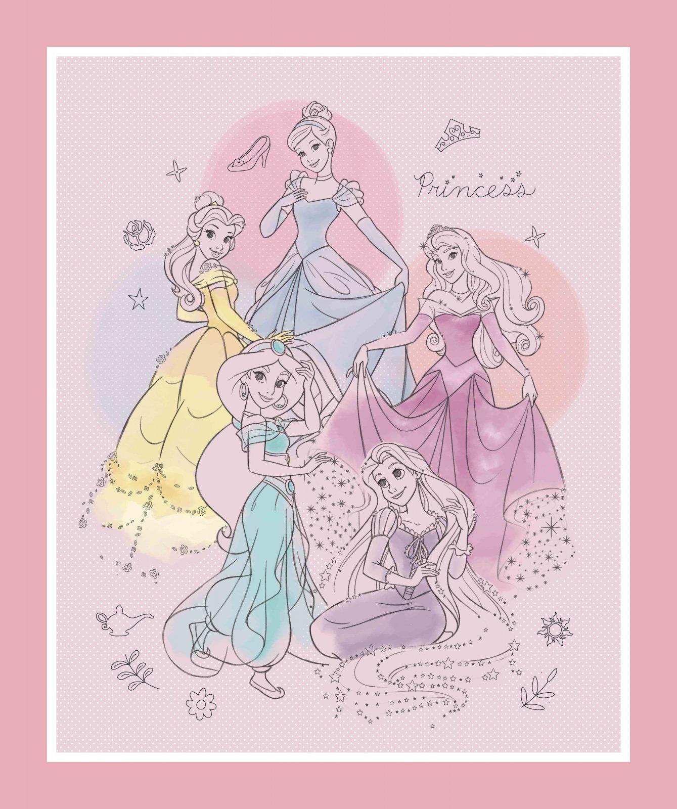 SC-Disney Princess 71387 Pretty Princess Panel