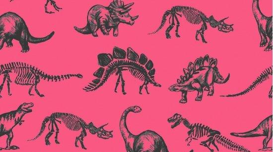 DS-Dinosaurs 753 Jurassic - Fuchsia
