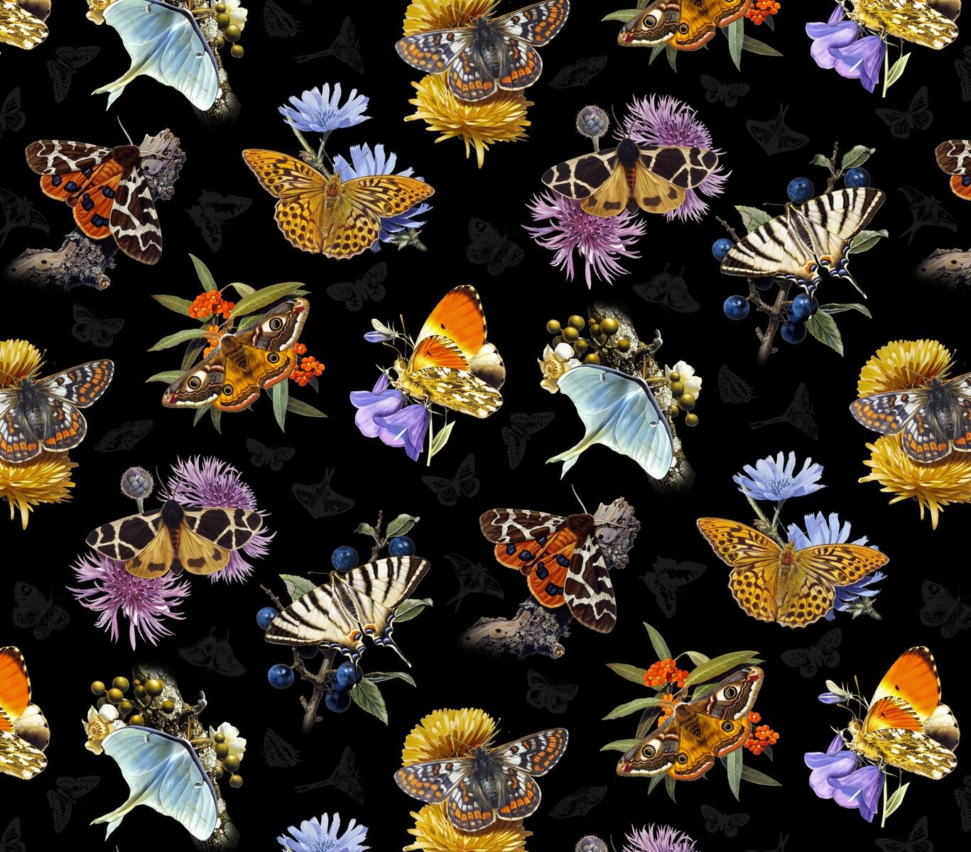 PROMO* ES-Butterflies and Moths 9801 Butterflies, Moths, Flowers - Black