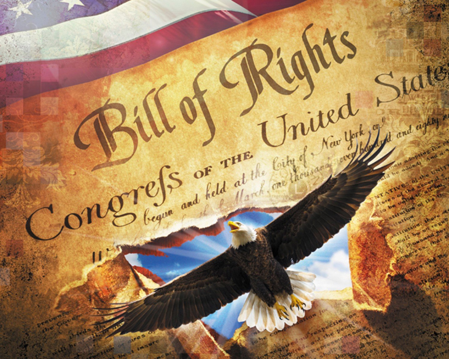 DT-Best of America AL-3914-0C-1 Bill of Rights Panel (35.5 x 44)