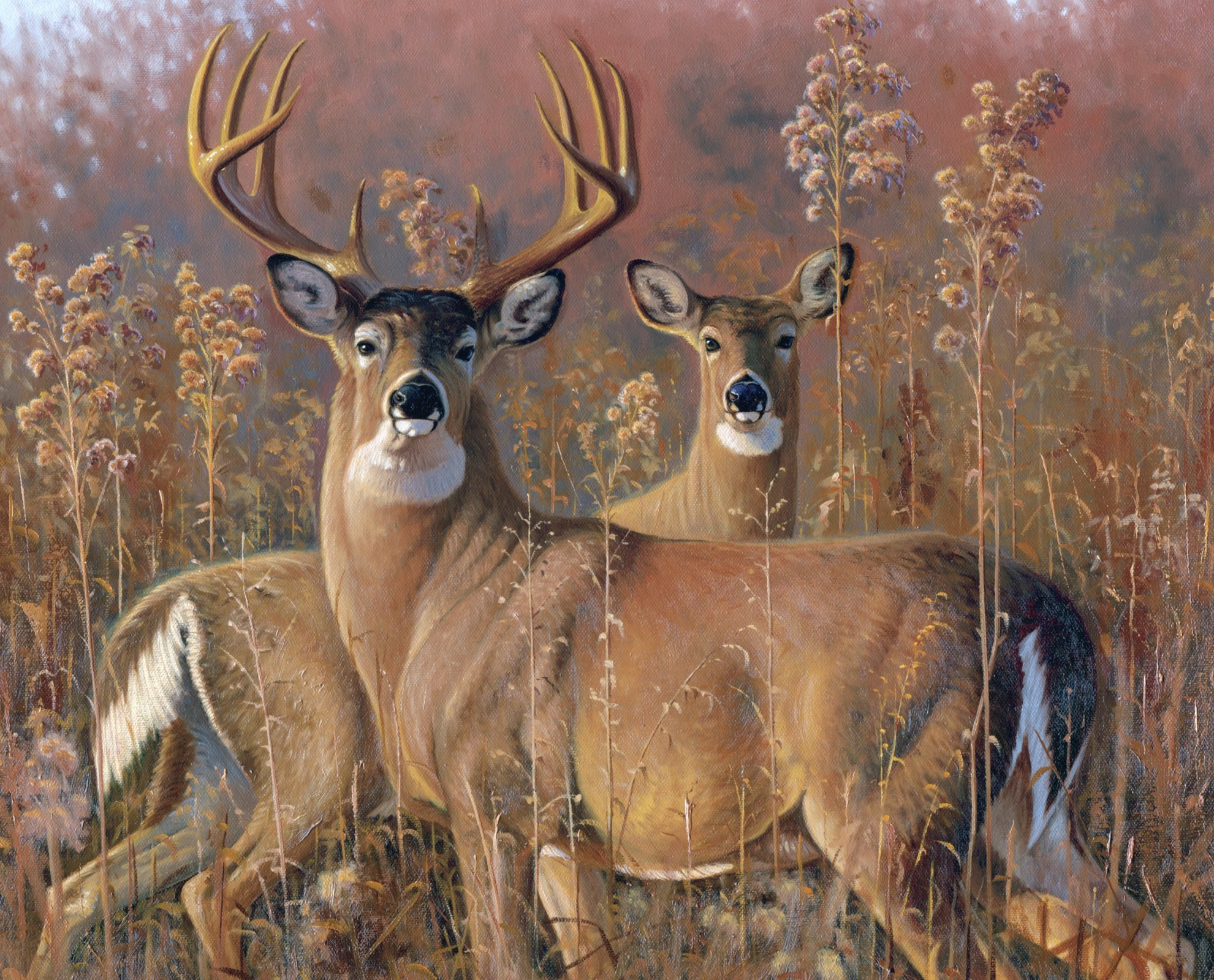 DT-David Exclusives - AL-3941-1 Fall Courtship Deer Panel