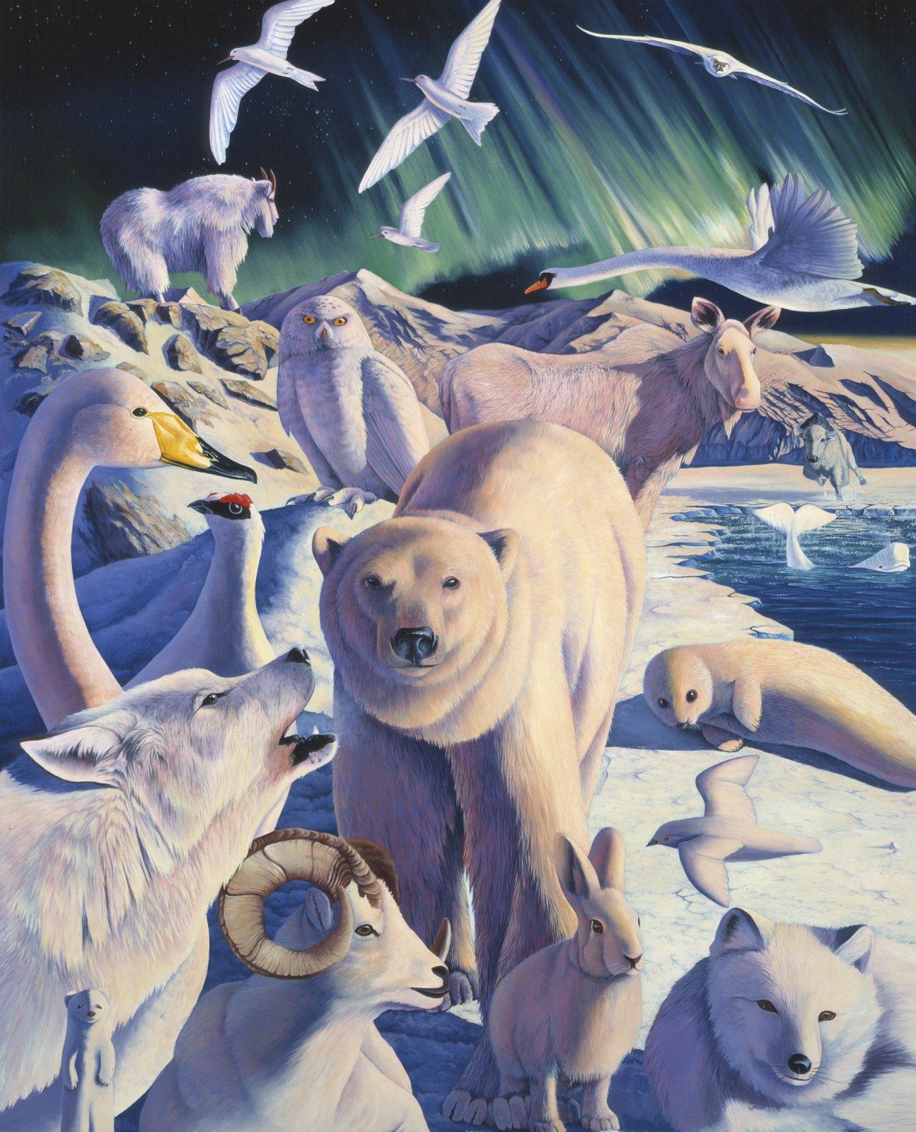 PROMO* DT-Foust Exclusives AL-4530-1C-1 Arctic Mysteries Panel (35.5 x 45)