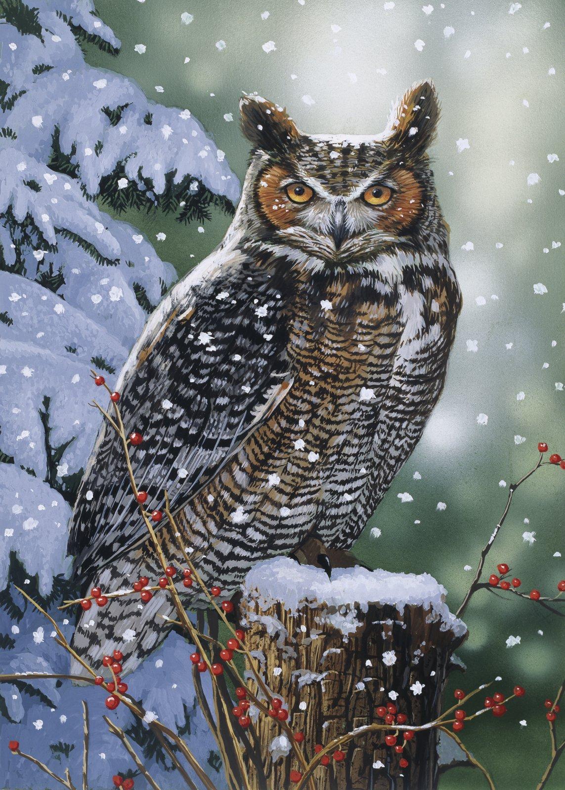 DT-Foust Exclusives - Owls - AL-4961-1C-1 Silent Watch
