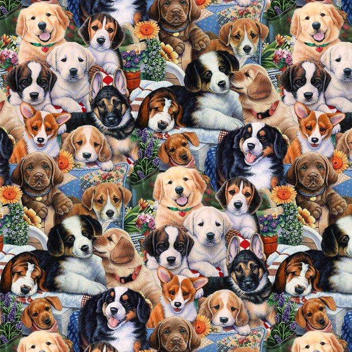 DT-Animal Love AL-3167-6C-1 Garden Puppies