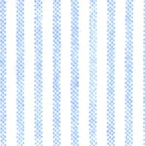 AE-Comfy Flannel Print 6215-111 Blue Stripe