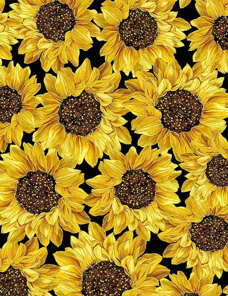 TT-Harvest CM8543 Black - Packed Metallic Sunflowers