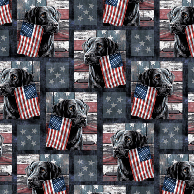 DT-Best of America ML-3138-9C Patriotic Lab