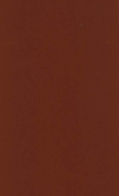 Polyester Poplin Brown