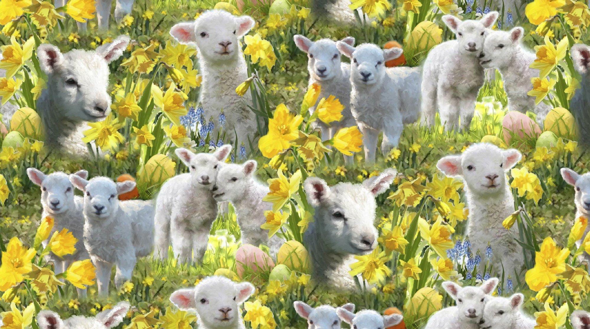 DT-Exclusive Digital Prints AL-3834-1 Easter Lambs Allover