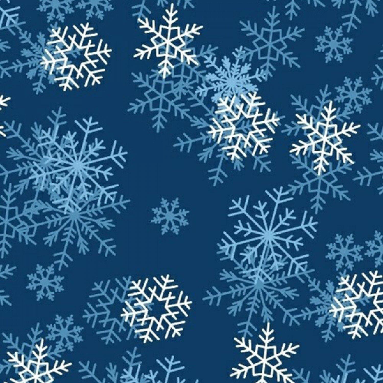 BT-Winterfleece 22359-3 Dark Blue Blizzard