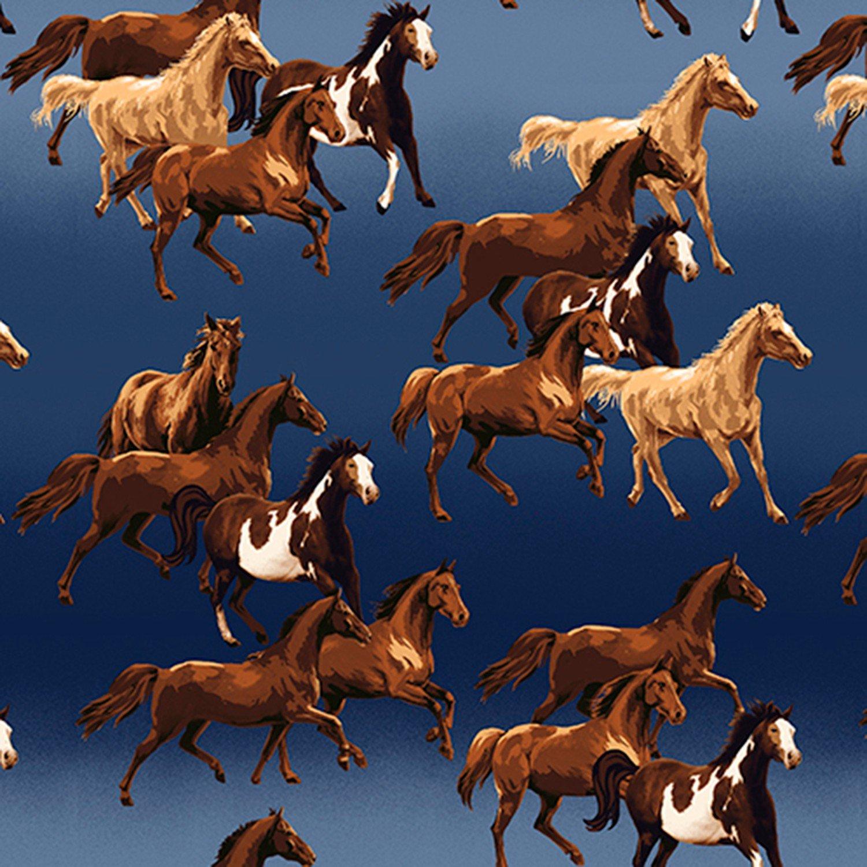 BT-Winterfleece 43427-1 Ombre Horses