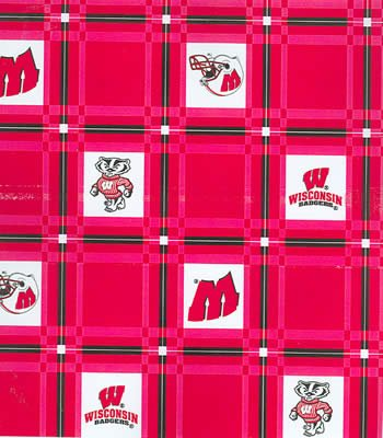 Wisconsin Tablecloth  -  Tailgate Fabric