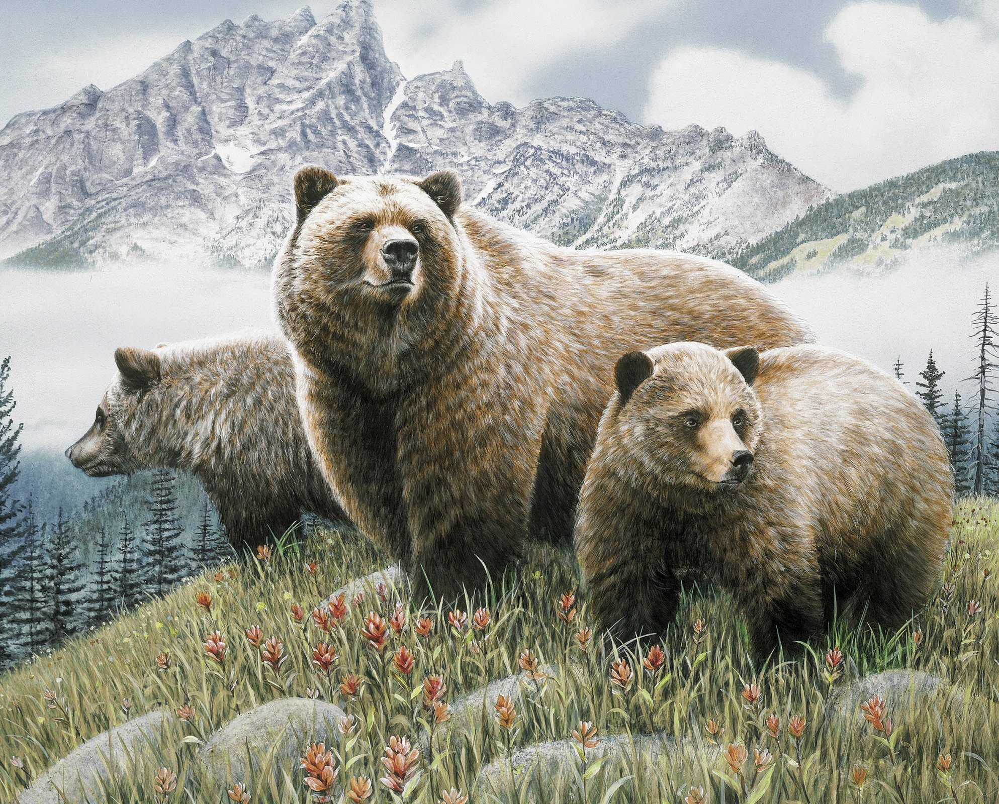 DT-Exclusives Prints WW-3131-1 Bears in the Mountains