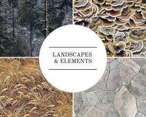 Landscapes & Elements