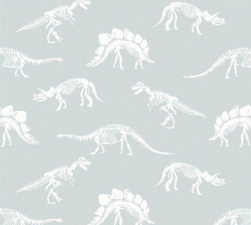 Fossils - Dinosaur Fossils 1597-Splash