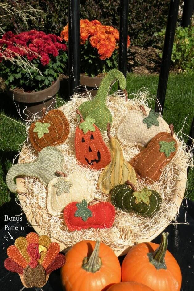 Fall Harvest Pins
