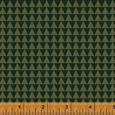40252 1 CW Wild Field Triangles