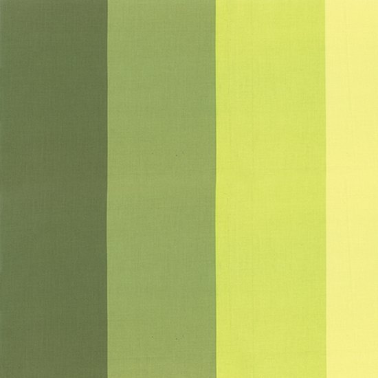 Color Me Happy - Ombre Stripe - Lime Green