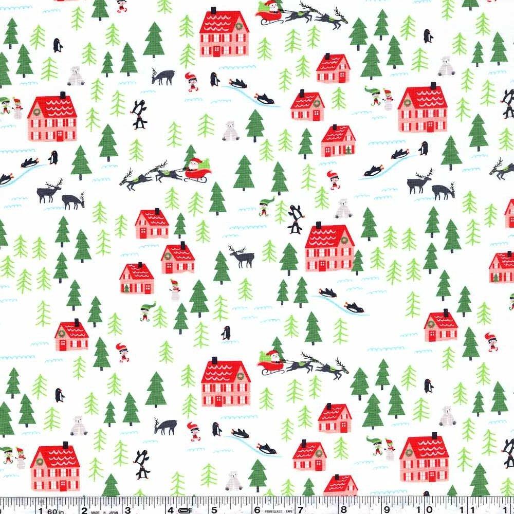 The North Pole - Santa's Village - Snow