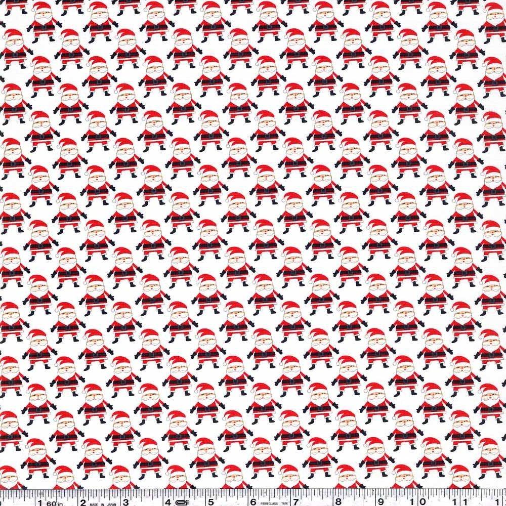 The North Pole - Santa Argyle - Snow