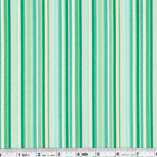 Fruit Stripe - Green