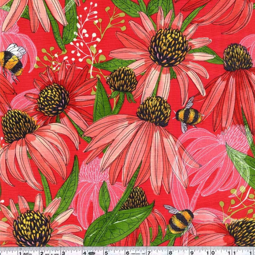 Painted Meadow - Coneflower - Passion