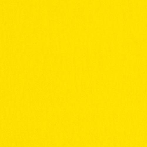 Felt Mini (043) - Color 313 - Citrus