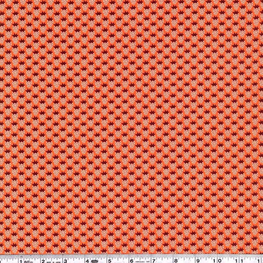 Berry Season - Berries - Orange