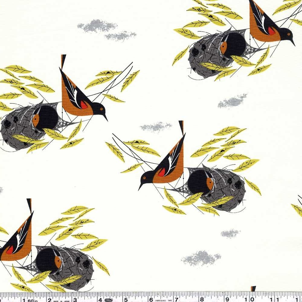 Bird Architects - Baltimore Oriole