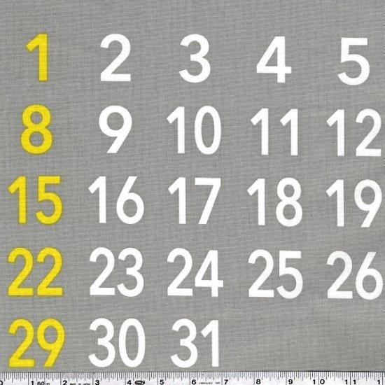 Calendar Panel - Grey