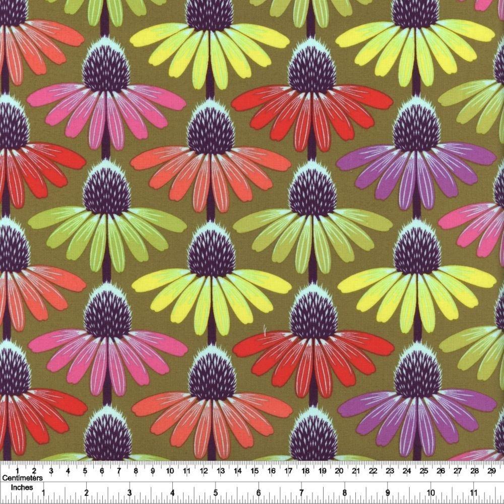 Hindsight - Echinacea Glow - Autumn