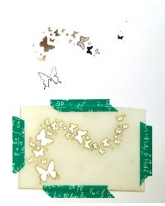 Um Wow Butterfly Swarm