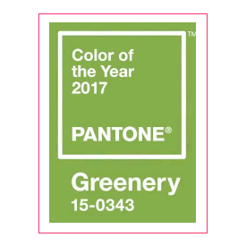 Greenery Color Swatch