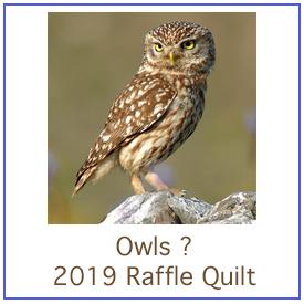2019 Raffle Quilt Design