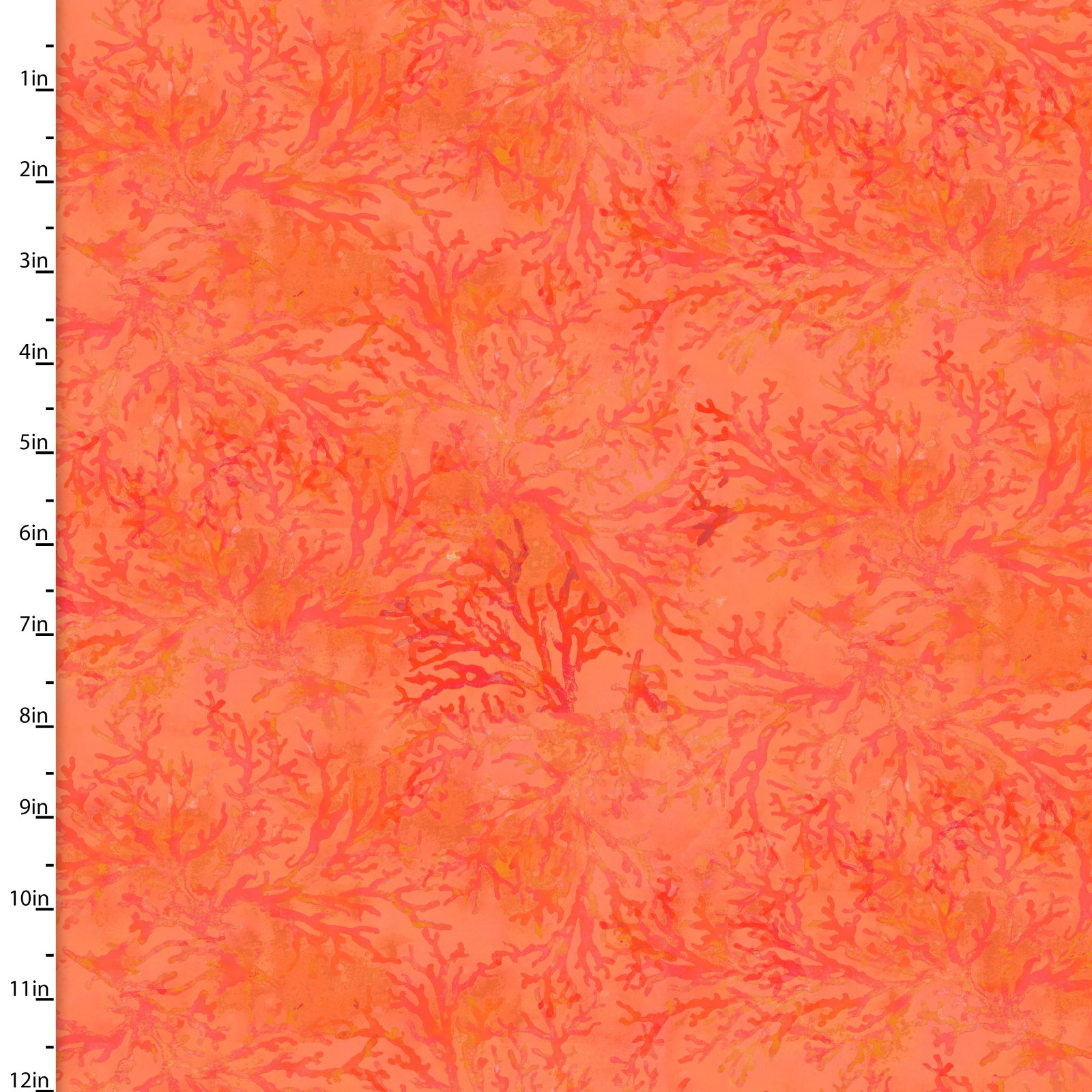 Under the Sea Collection<br>12283-Orange