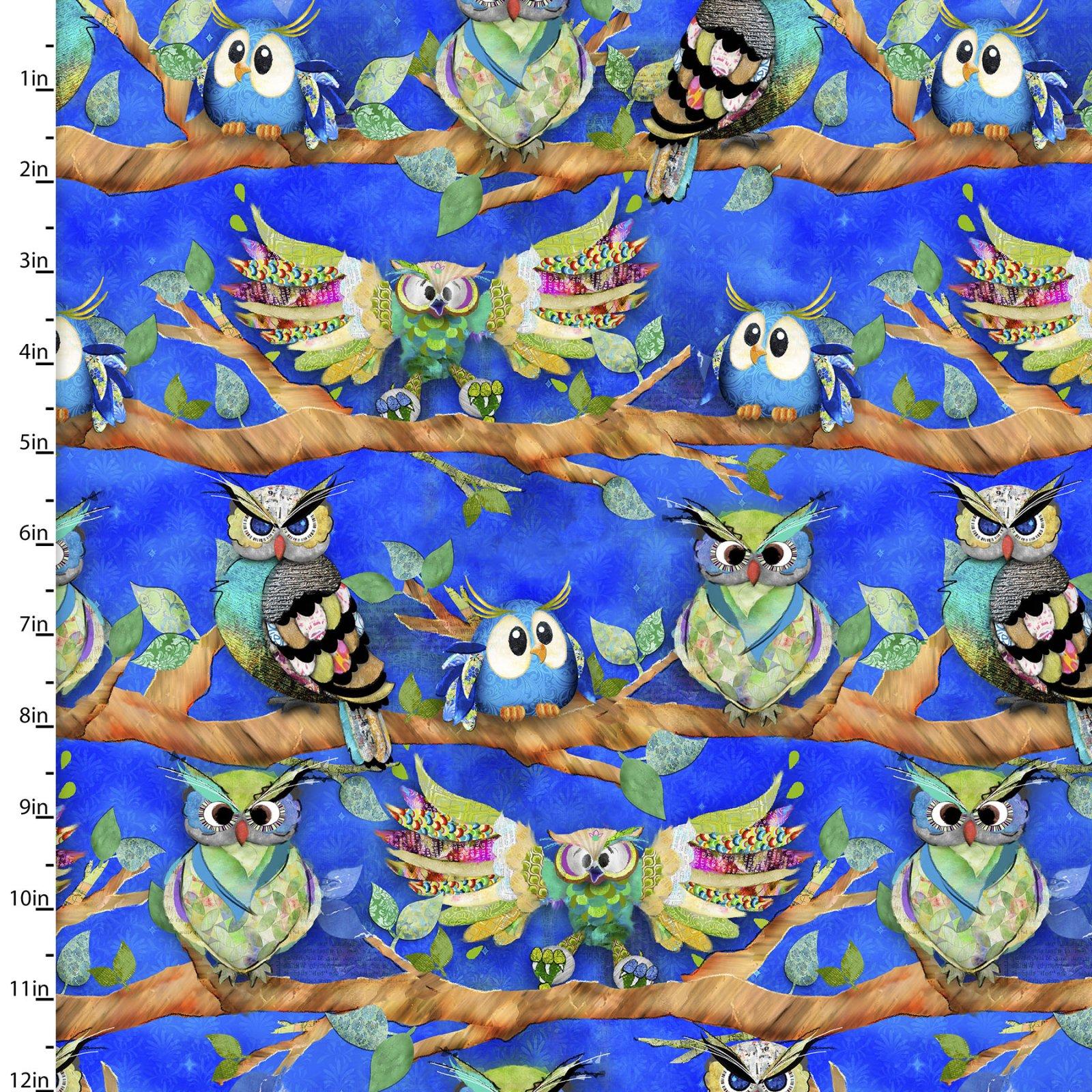 Go Owl Out Collection<br>16508-ROY-CTN-D