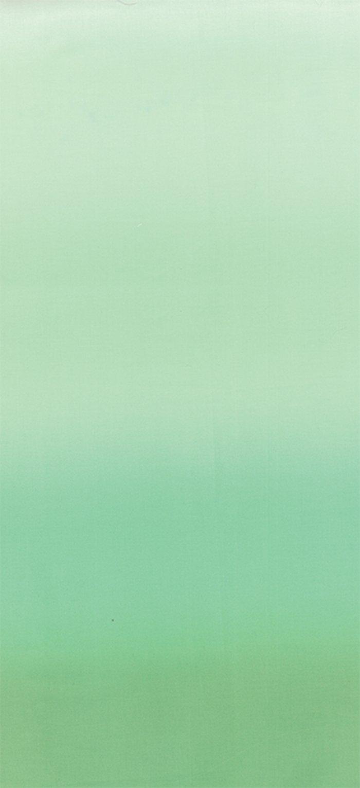 10800-210 Ombre mint