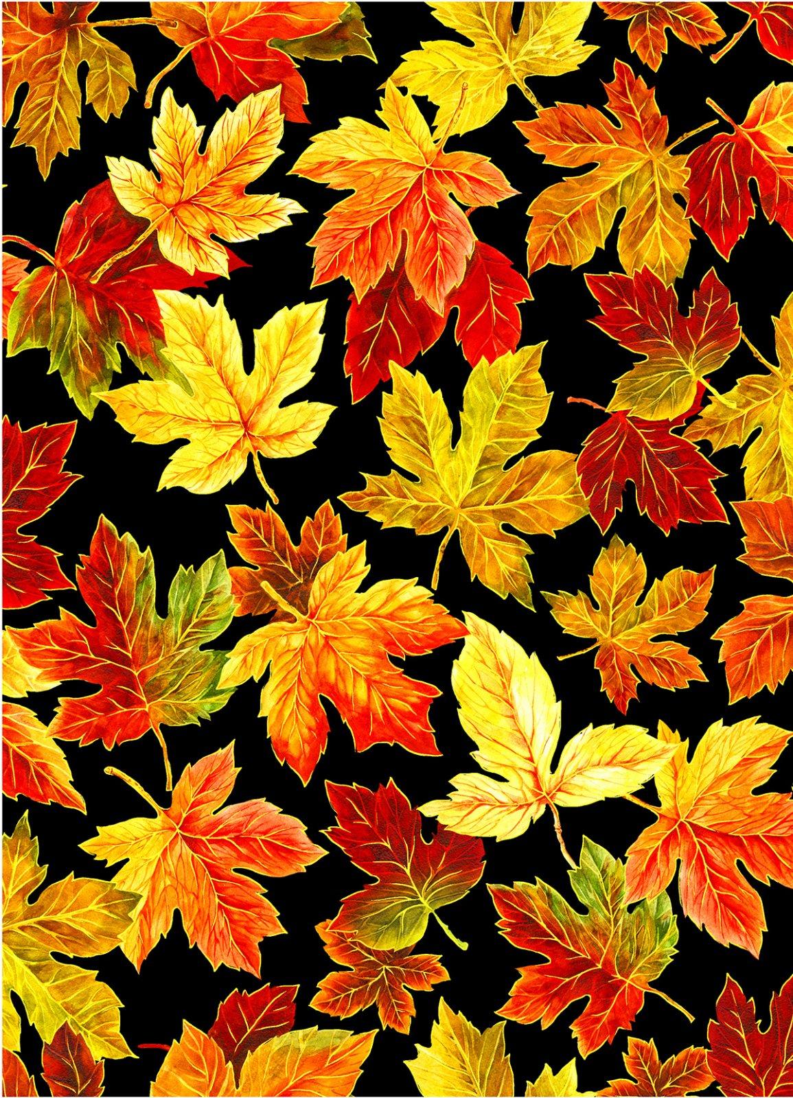 Change of Seasons – 59-4281
