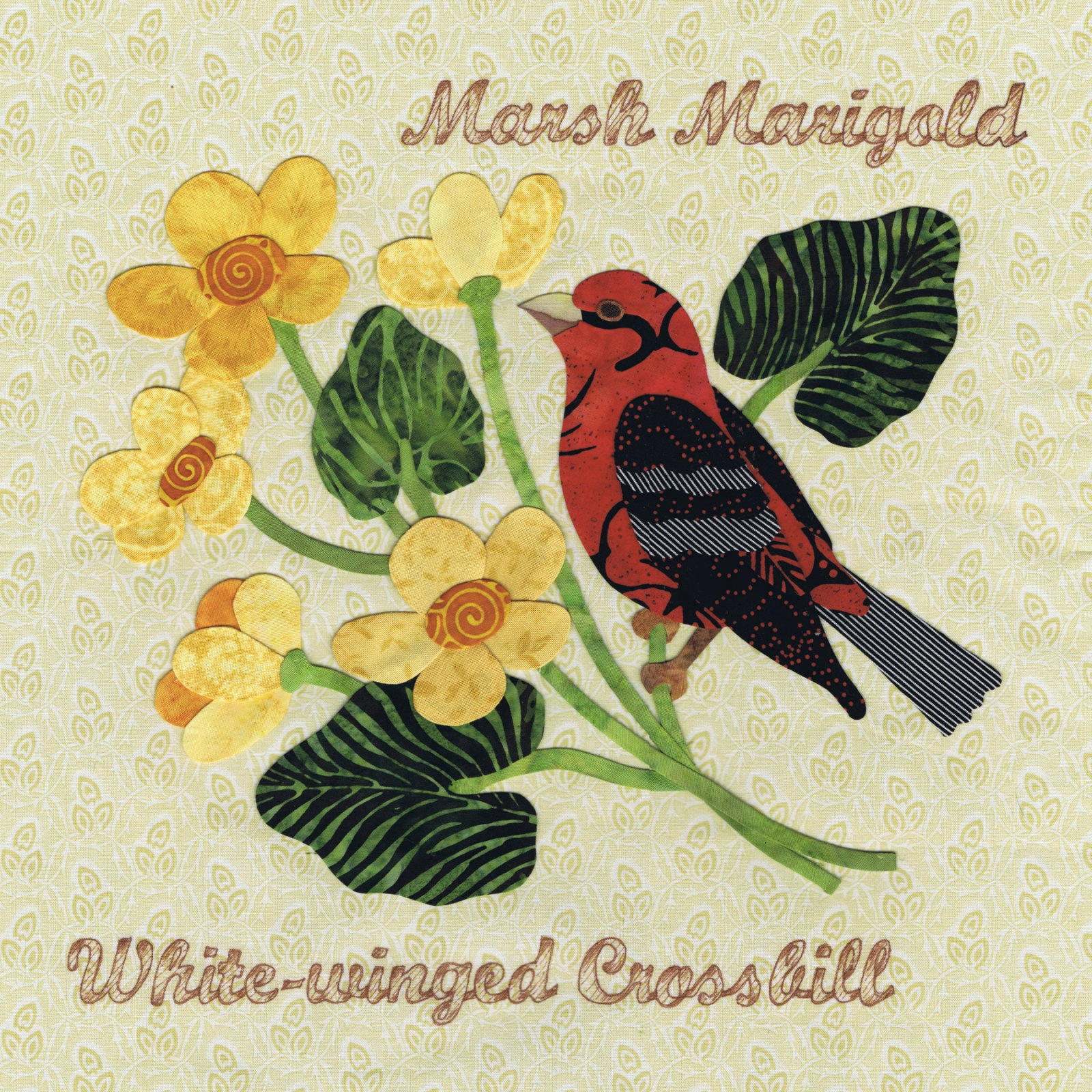 P3-1503 White-winged Crossbill & March Marigold
