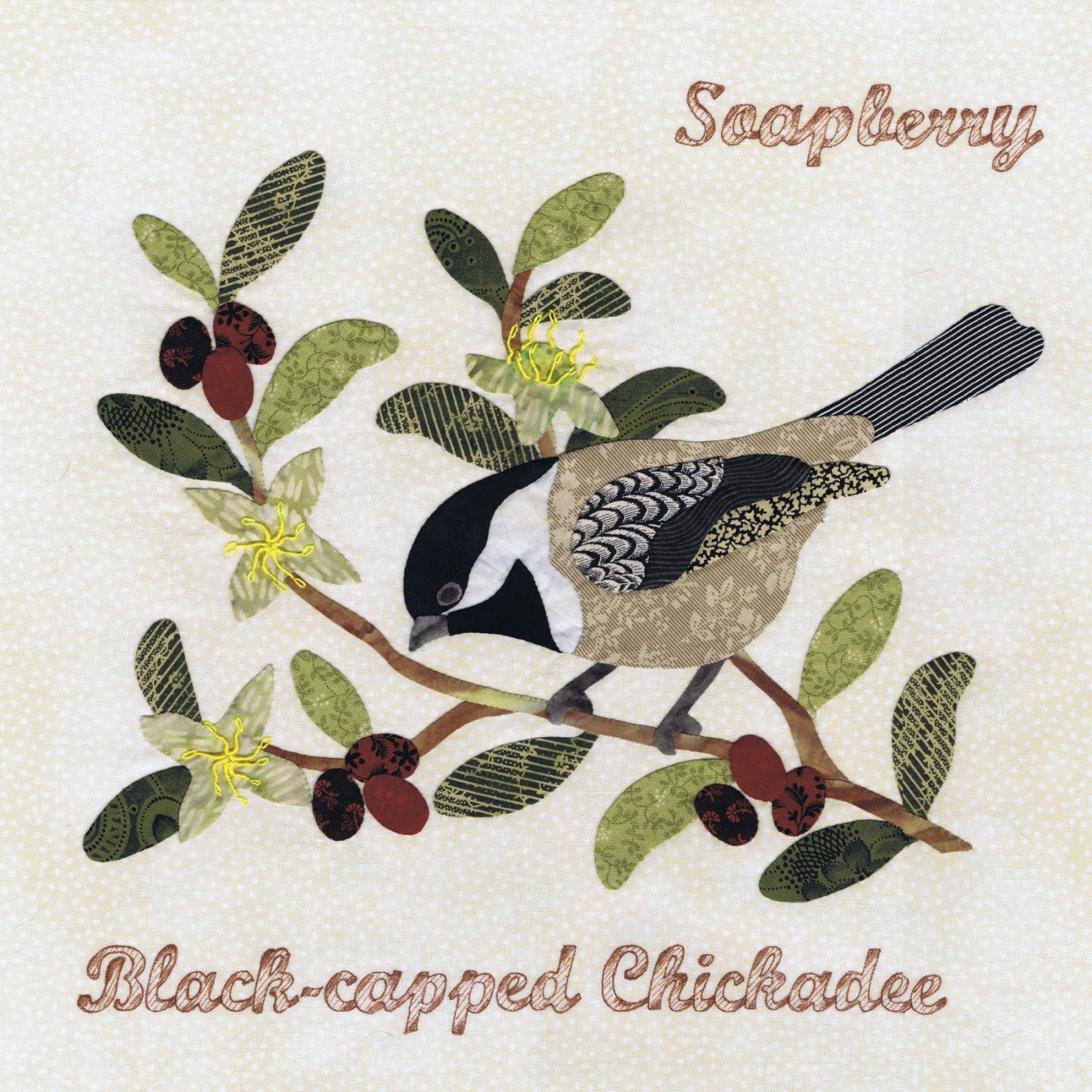 P3-1504 Black-capped Chickadee & Soapberry