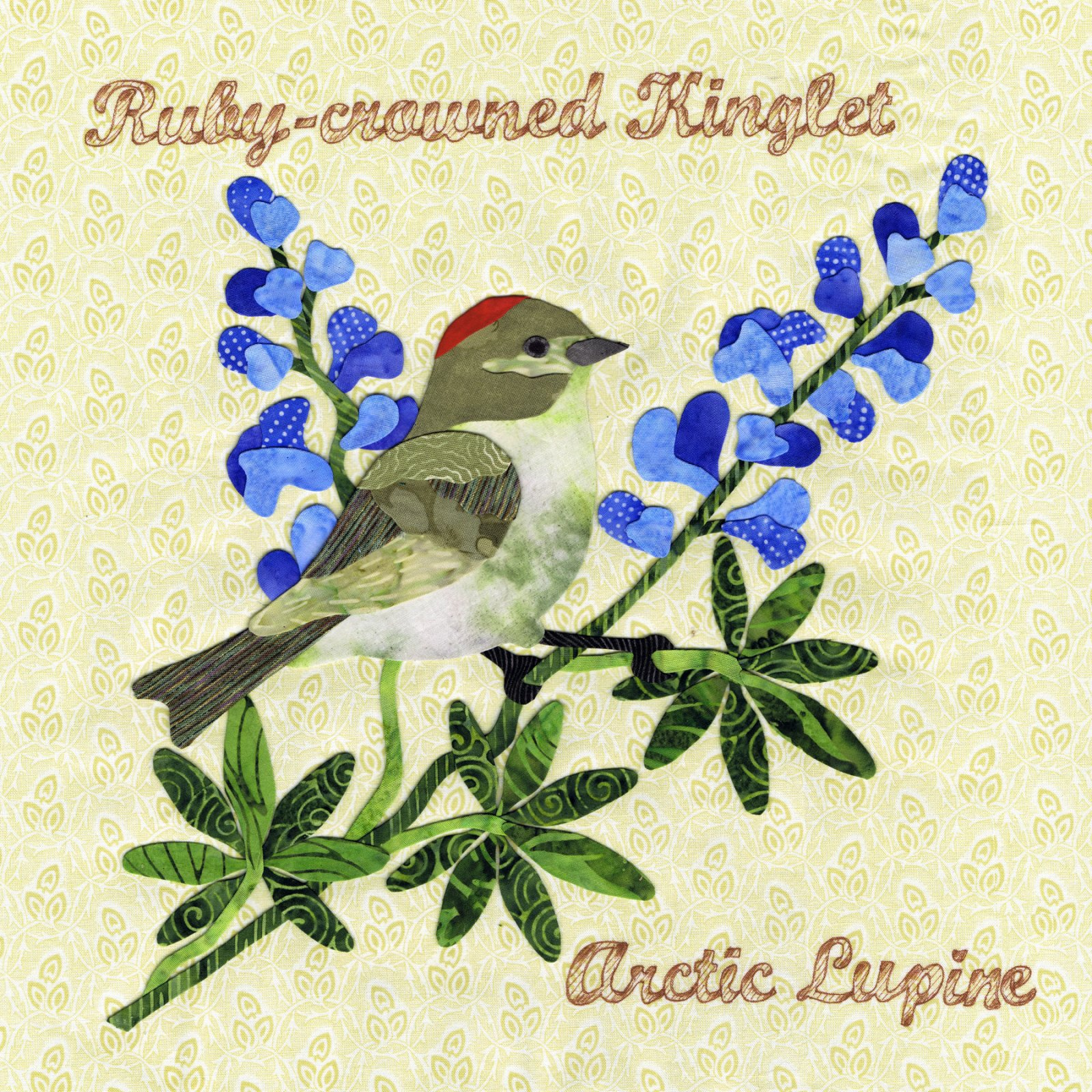 P3-1506 Ruby-crowned Kinglet & Arctic Lupine