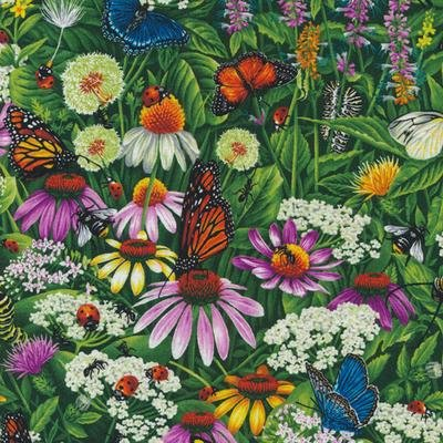 Frolicking Field by Paintbrush Studio - 120-15111 Monarch Butterfly Floral