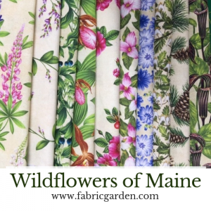 Wildflowers of Maine - Maine Shop Hop fabrics 2019 - Maine Quilt shop Hop wildflower fabric