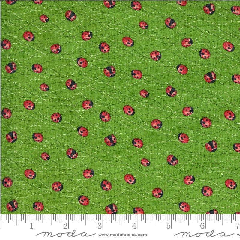 Moda - Solana 48684 15 Ladybug Sprout Green