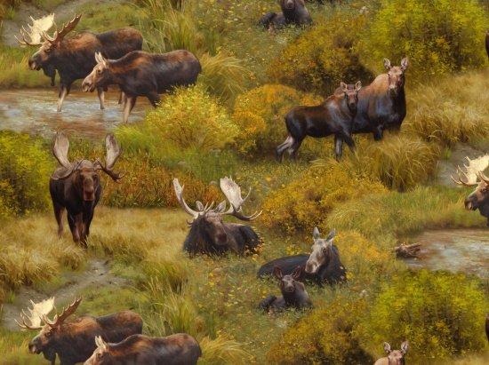 Elizabeth Studio 8801 Green - Moose