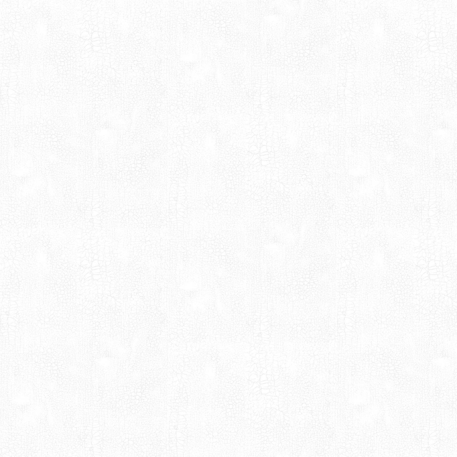 Northcott CRACKLE 9045-10 SNOW  White Tonal