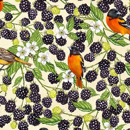 PRE-ORDER: Birds and Berries of Maine: Oriole & Blackberry AHYD-19589-447 - Official Maine Shop Hop Fabrics 2020
